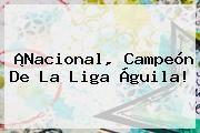 http://tecnoautos.com/wp-content/uploads/imagenes/tendencias/thumbs/nacional-campeon-de-la-liga-aguila.jpg Nacional vs Junior. ¡Nacional, campeón de la Liga Águila!, Enlaces, Imágenes, Videos y Tweets - http://tecnoautos.com/actualidad/nacional-vs-junior-nacional-campeon-de-la-liga-aguila/