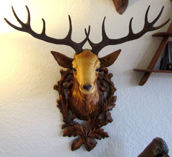 126 Best Images About Taxidermy Curiosities On Pinterest
