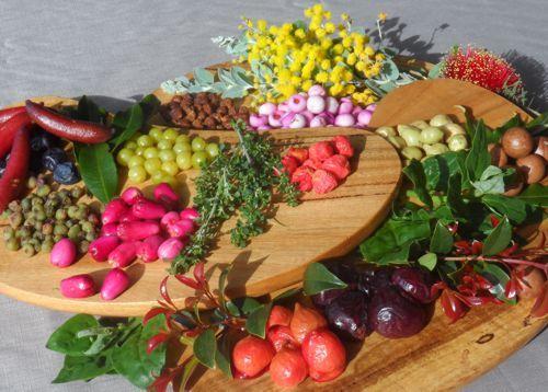 Flavours of Oz - Bush foods, utmost healthy foods - Homepage - Flavours of Oz - Bush foods, utmost healthy foods