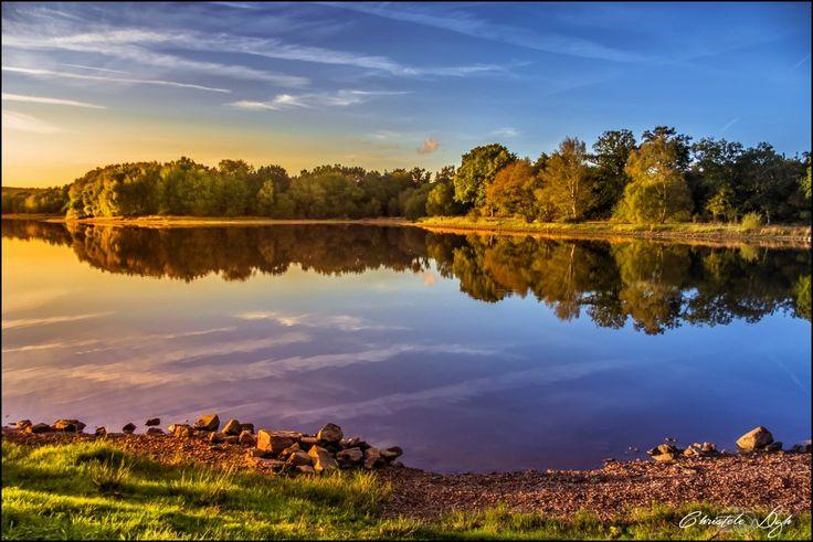 L'étang de Paimpont ~ Brocéliande | Flickr - Photo Sharing!