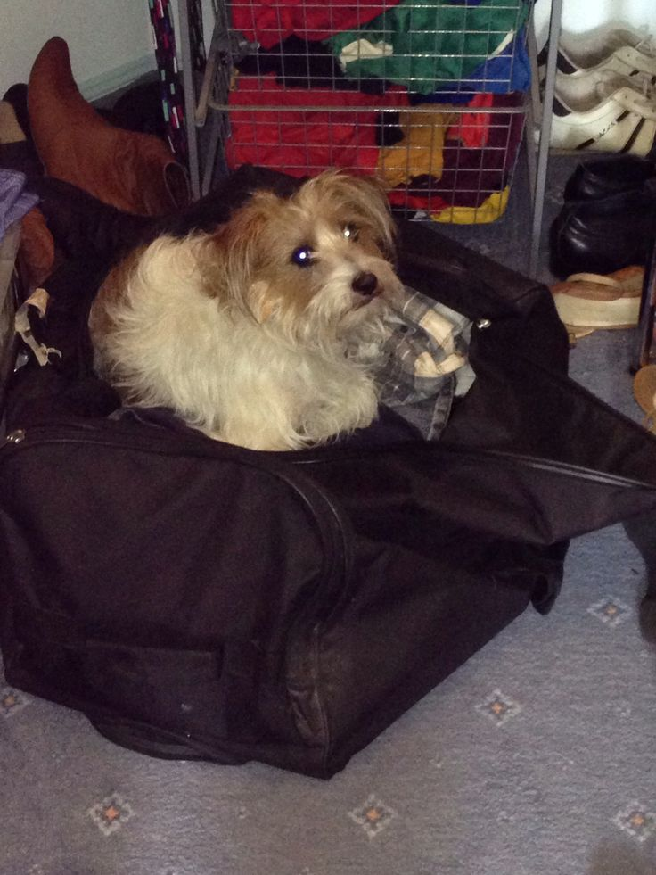 Nope... Not leaving without me!