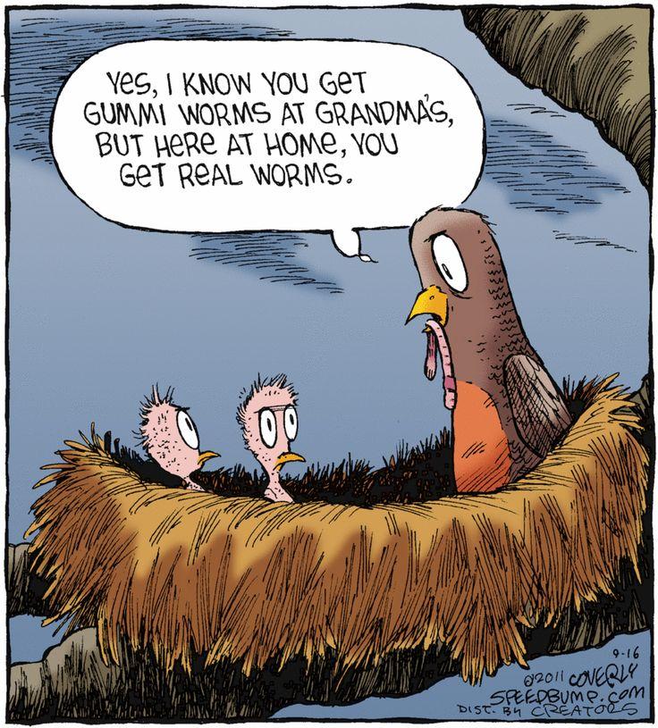 …the early worm gets the bird #SpeedBump