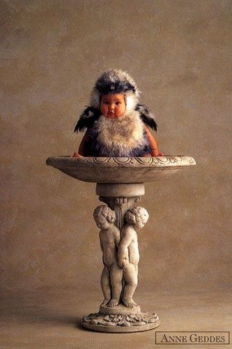 Anne Geddes Galleries | Gallery 6