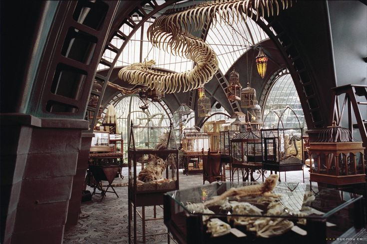 lemony snicket's Reptile Room