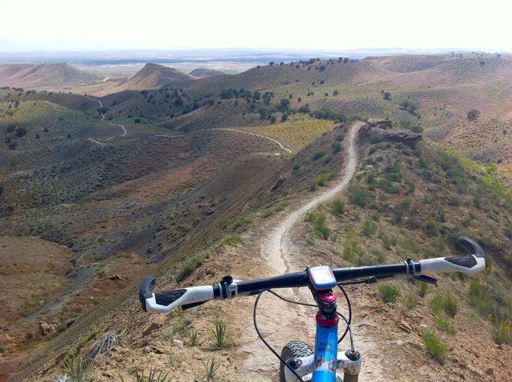Here are some of the best things to do in Grand Junction, my home town! Got to love Colorado!