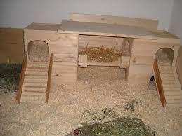 Bildergebnis für meerschweinchen haus selber bauen