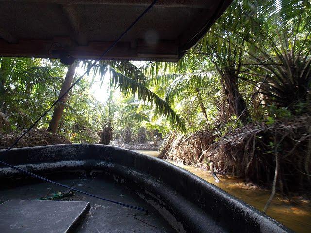Mademoiselle Limettenfalter: Panama-Dienstag: Unterwegs auf dem Panamakanal und dem Gatúnsee