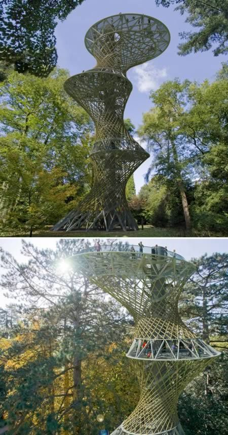 10 Most Amazing Observation Tower. Bamboo Observation Tower (Amazon)