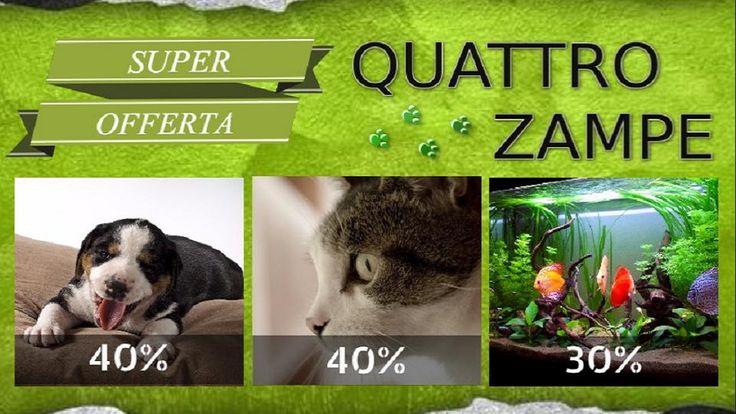 SCARICA GRATIS- Quattro zampe offre uno sconto del 40% su tutti gli accessori per cani e gatti e sull'arredo acquario e uno sconto del 30% su tutti gli accessori per acquario.