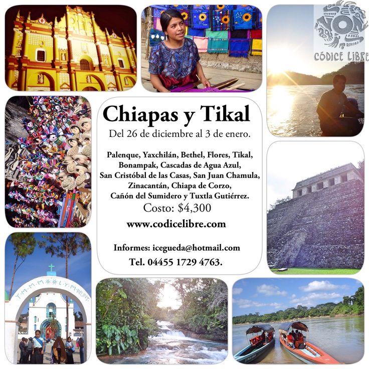 Recorre Chiapas y Tikal. Disfruta de maravillosos lugares en México. Organiza: www.codicelibre.com. Para más información escríbenos a: icegueda@hotmail.com #viajes #viajeros #travel #México #playas#recorridos #zonasarqueológicas.