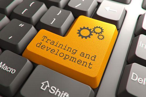 Learn new skills in the WAMITAB skills village