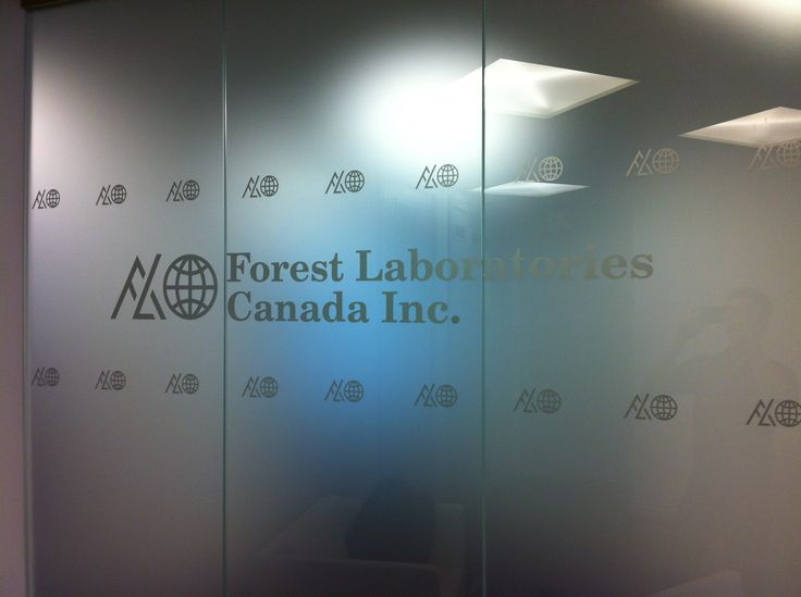 Frost vinyl applied to office windows as privacy film #windowfrost #windowgraphics