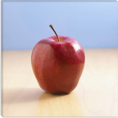 Cover Photo: I chose this photo of an apple on a desk because it conjures up the traditional image of a teacher/mentor-student relationship and because the apple  has long been considered to be the fruit of the tree of knowledge.