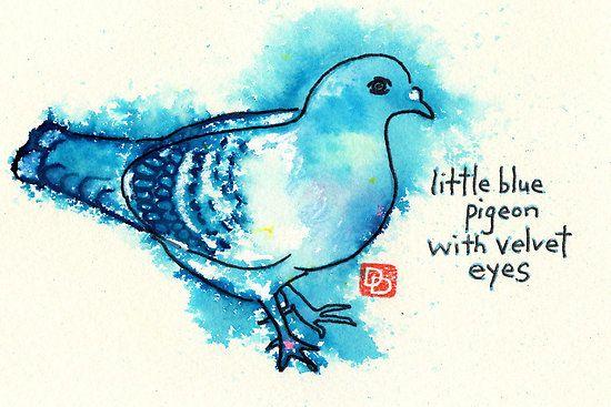 Little Blue Pigeon ; dosankodebbie
