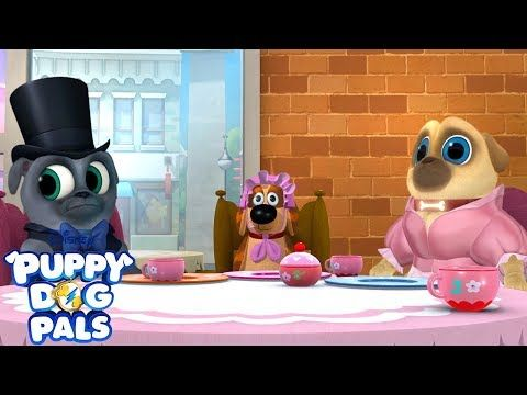Tea Pup Party Puppy Dog Pals Disney Junior Youtube Dogs