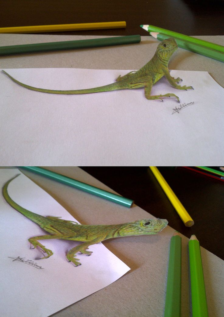 anamorphic Lizard by Tanyakillian on DeviantArt