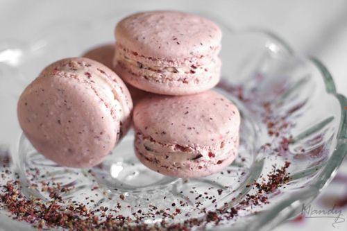 Cranberry Raspberry Tea Macarons with Cranberry Chunk Buttercream