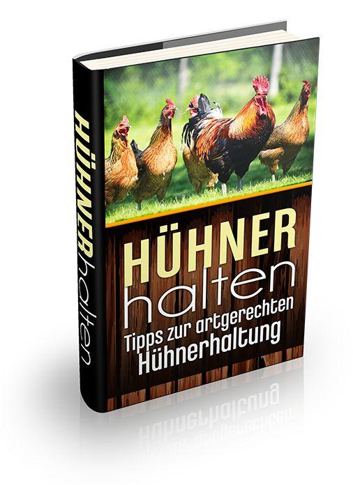 Der wahrscheinlich ausführlichste und praktiste Artikel über die Hühnerhaltung und das artgerechte Hühner halten im deutschsprachigem Internet.