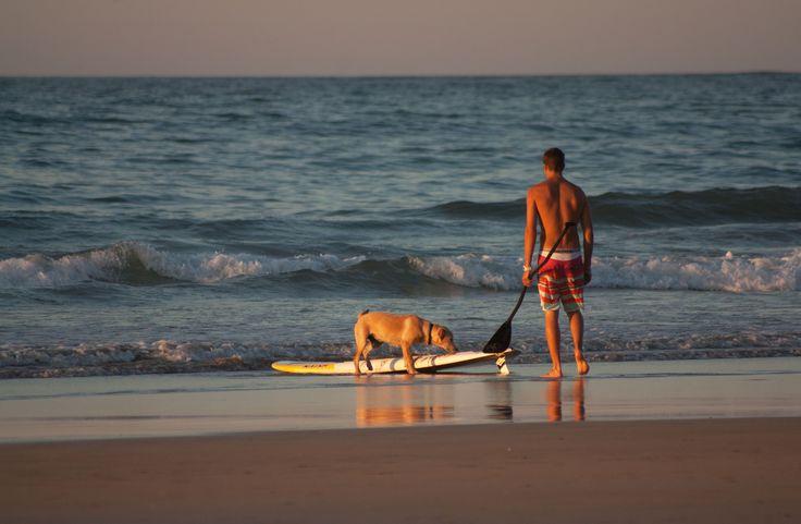 #paddle surf