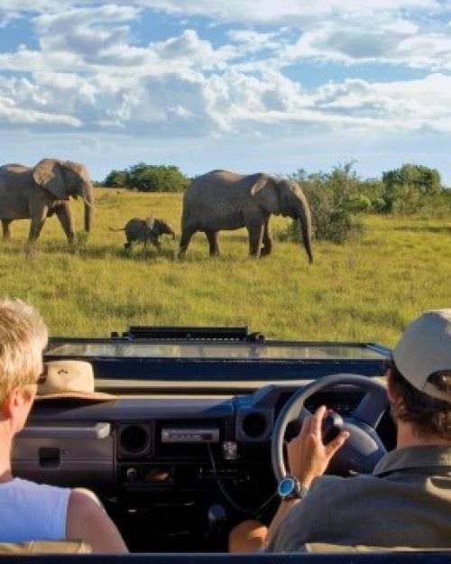 Kichaka Private Game Lodge #grahamstown #travel #animals #adventure #nature