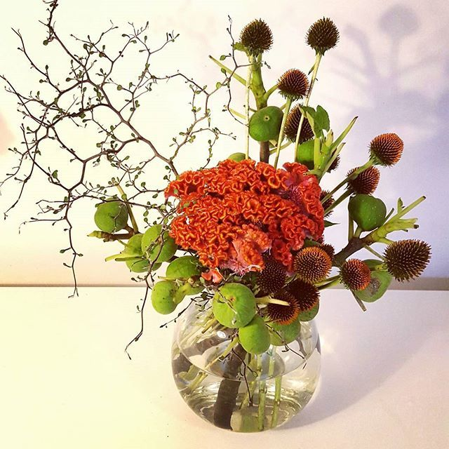 Fun and modern arrangement featuring figs and celosia.