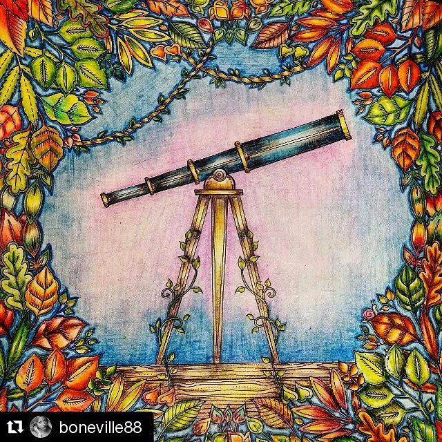 Telescope Enchanted Forest Coloring BooksAdult