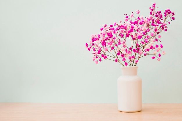 Pink Baby S Breath Flowers In White Bott Free Photo Freepik Freephoto Background Flower Floral Baby In 2020 Babys Breath Flowers Flowers Flowers Bouquet