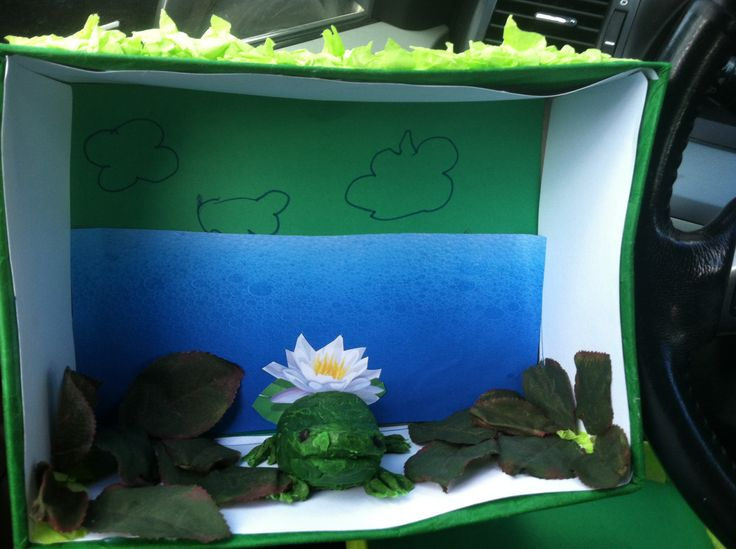 Frog diorama | Girls School Projects | Reptile habitat ...