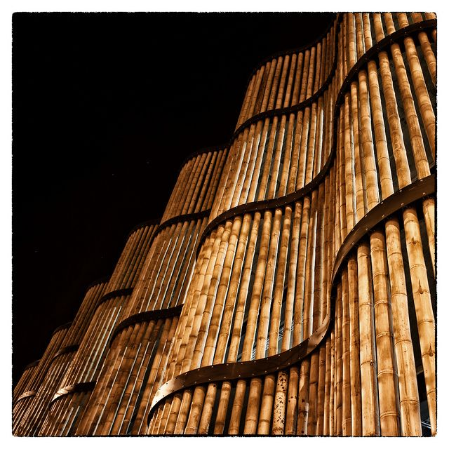 Car Park of the Leipzig Zoo | HPP Architects    Bamboo Wall by shlomo2000, via Flickr