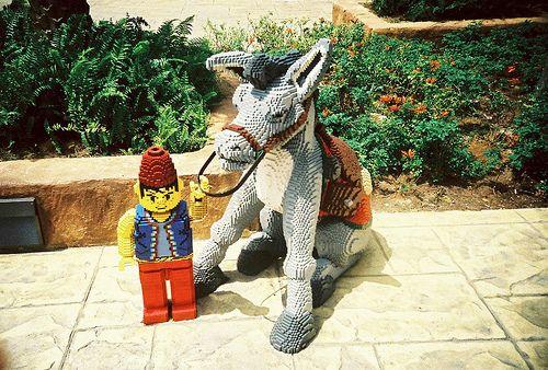 68 best donkey images on pinterest donkeys donkey and