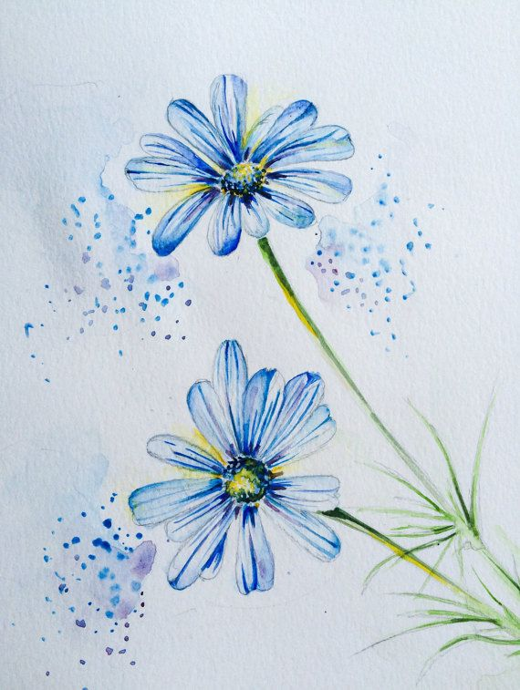 Margherita blu acquerello stampa. Stampa di di WorldOfWatercolour