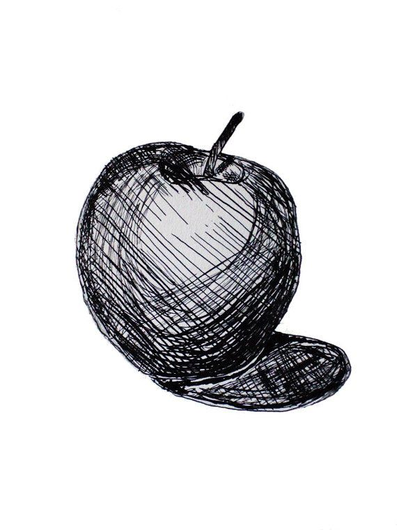 Pen and Ink Apple Still Life Art Print on 5 by 7 By Methods of Deduction Direct from Artist on Etsy, $17.00