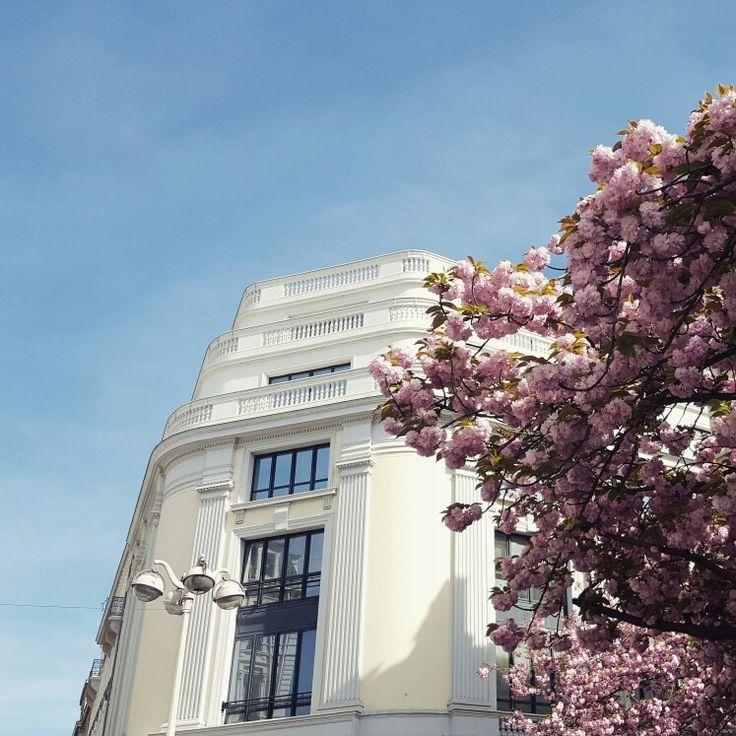 Lyon, rue Édouard Herriot au printemps
