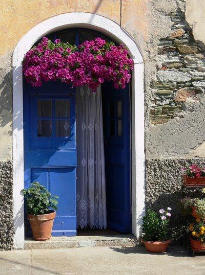 .: Pink Flowers, The Doors, Paintings Doors, Blue Doors, Lace Curtains, Purple Flowers, Front Doors, Photo, Hanging Baskets
