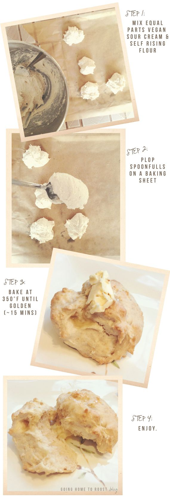 two-ingredient vegan biscuits
