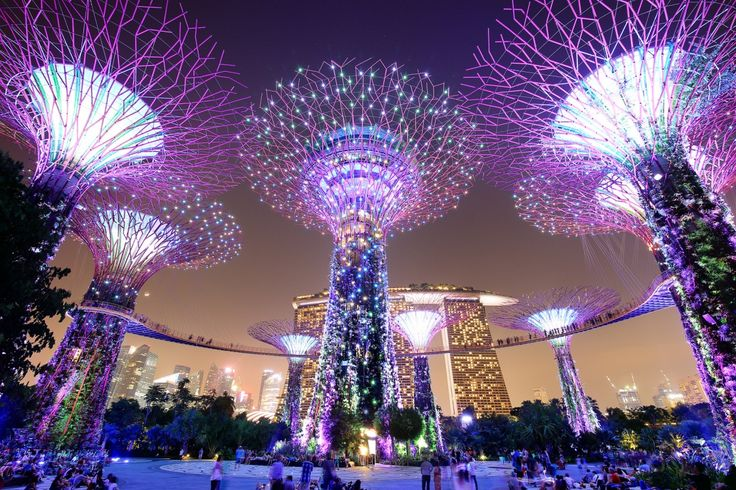 Singapore Parks Gardens by the Bay Night Cities