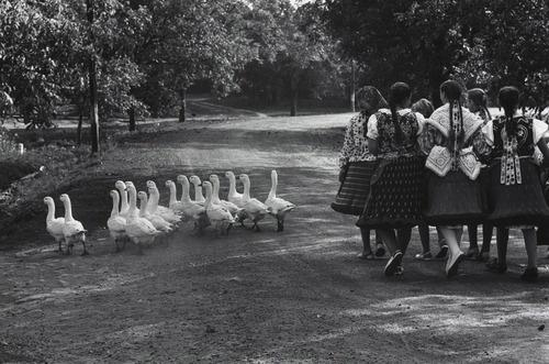 Girls in traditional Hungarian dress, 1964 Bujak ?