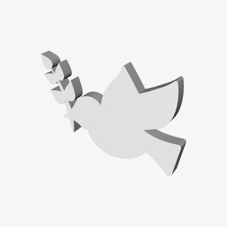 gołąb-gałązka