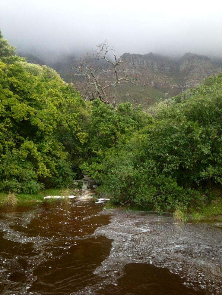 Table Mountain. Lots of rain !!