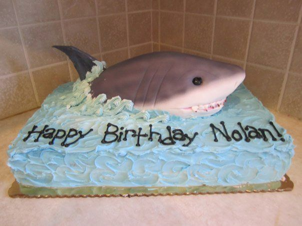 Easy shark cake recipes