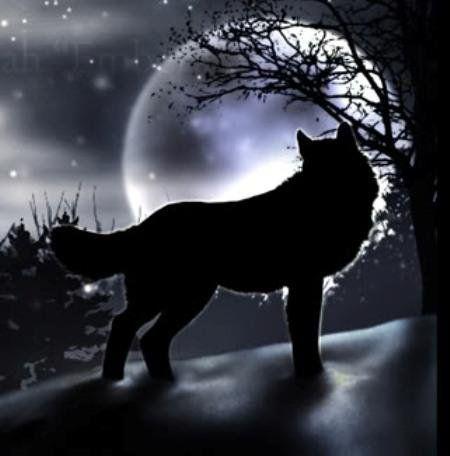 ΜΑΝΟΣ ΕΛΕΥΘΕΡΙΟΥ, O νοητός λύκος |