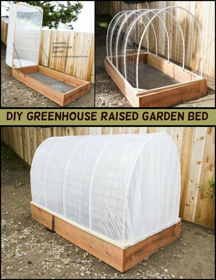 This Greenhouse and Raised Garden Bed Combo Grows and Protects Your Produce All Year Around