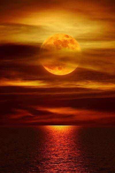 Moonlight Reflections  La Jolla, California