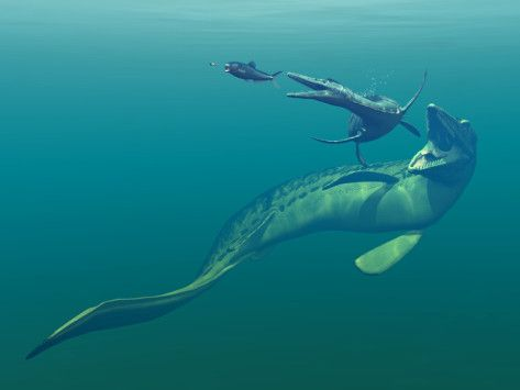 Meeres Dinosaurier