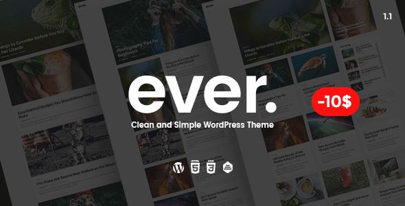 Download Ever v1.1 - Clean and Simple WordPress Theme Nulled Latest Version