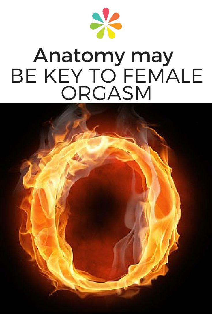 208 Mejores Imágenes de Salud Sexual en Pinterest Saludable-6337