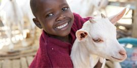 A donation in their name to Heifer International - Charity Ending Hunger And Poverty