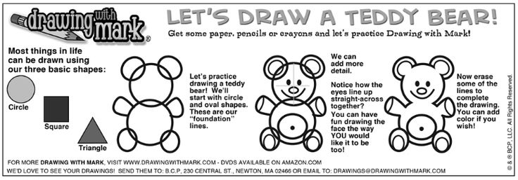 Learn how to draw a teddy bear with these basic steps!