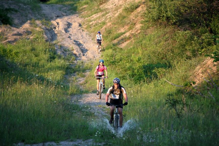 Mountain #Biking - We have a great mix of twists and turns! And it's all because of our hills. Refer to the trails portion of our Outdoor Adventure Map so you can get started.  http://www.northumberlandtourism.com/en/outdoor-adventure/Mountain-Biking.asp