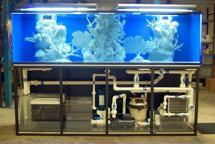 Best Aquarium Filter A Comprehensive Guide Saltwater